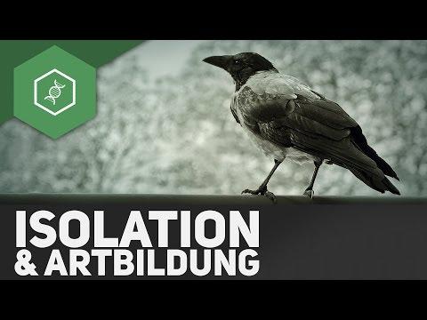 Isolation & Artbildung - Evolutionsfaktoren 5