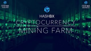 HASHBX  - Cryptocurrency Industrial Solar Mining farm Live Night Tour | Thailand Chonburi