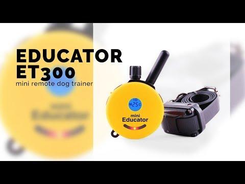 educator-et300-mini-remote-dog-trainer