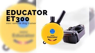 Educator Et300 Mini Remote Dog Trainer