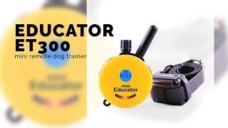 Educator Et300 Mini Remote Dog Trainer