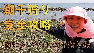 愛知県知多郡美浜町のやなし潮干狩り場に行きました。 攻略法とは大げさ...