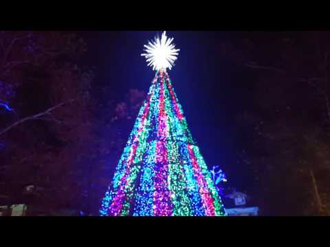 The Musical Christmas Tree At Silver Dollar City