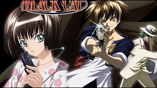 Unboxing/Vorstellung ~ Päckchen von Nipponart ~ Black Cat Collector´s Edition  ~ Anime DVD (German)