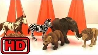 Kid -Kids -Cute Animal Infant Bath Toys Turning Magically into Schleich Safari Toys/Hidden Surprise