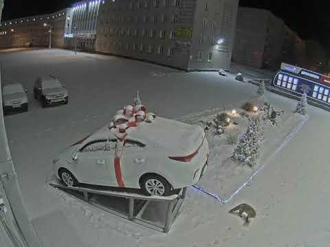 Лиса возле управления. Оленегорск