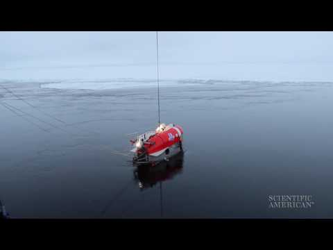 Searching for Life at the Bottom of the Arctic