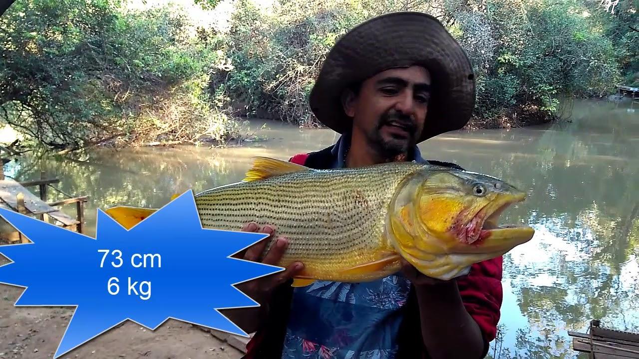 Download Pescaria no poção com Matheus,Flávio e Valter 1º Episódio