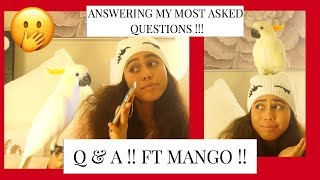 VLOGMAS | DAY 18 : Q&A with MANGO ?!! * ANSWERING MY MOST ASKED QUESTIONS * || Asia Monet