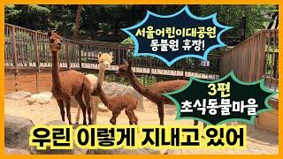 서울어린이대공원 동물원 휴장 이야기_3편 초식동물마을썸네일