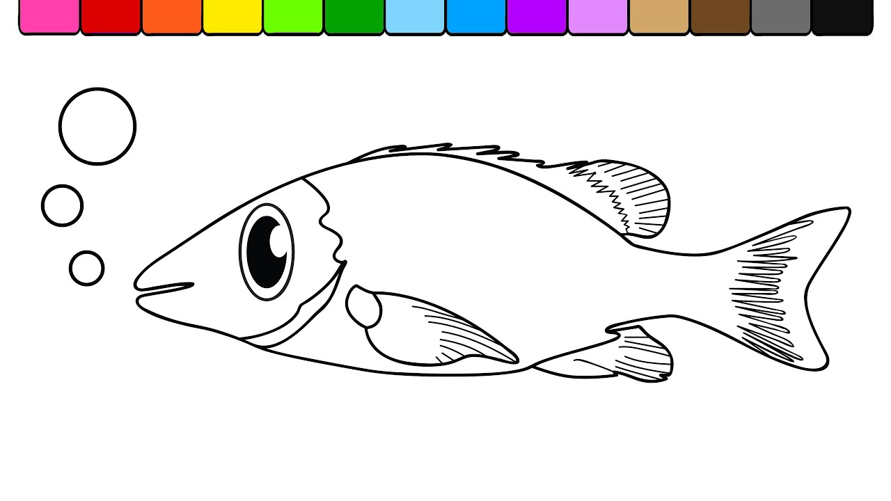 learn colors for kids and color this fish coloring page 4k
