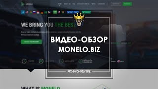 Monelo - Куда инвестировать криптовалюту? - RichMonkey.biz