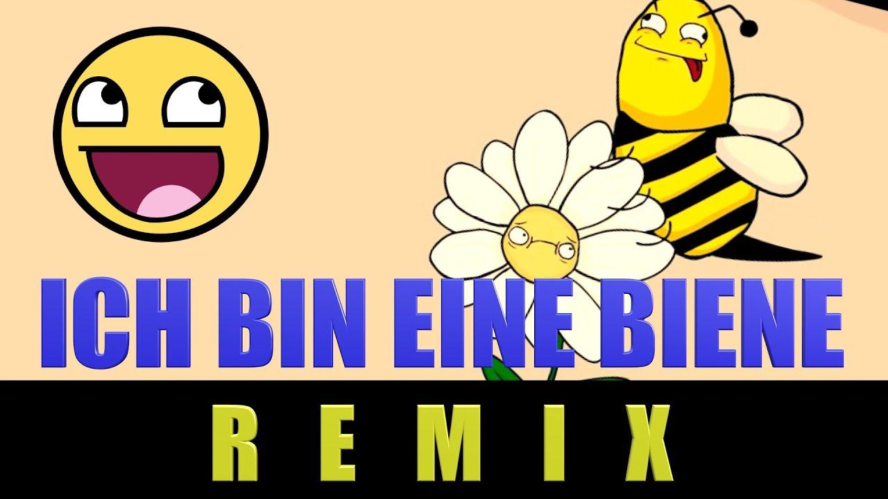 Stard Ova - Ich bin eine Biene - Fun Remix - YouTube