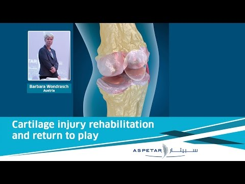 Cartilage Injury Rehabilitation and Return to Play | Barbara Wondrasch (Austria)
