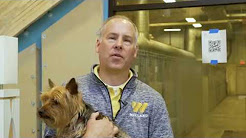 Wieland Walkthrough: The Capital Area Humane Society