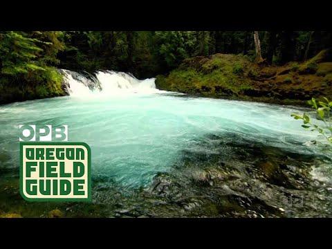 Tour 8 Beautiful Oregon Rivers