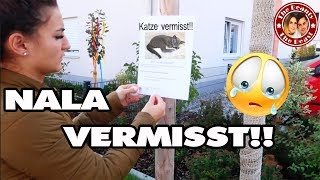 NALA WIRD VERMISST - KATZE ENTLAUFEN!! | daily VLOG TBATB