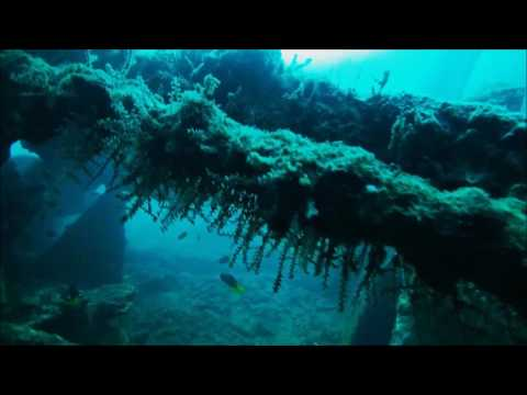Dive Video Andaman Barefoot Scuba Padi Open Water