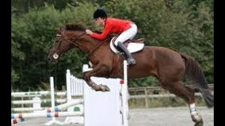 ((LIVE)) FEI Jumping - Caledon ON, CAN 2018