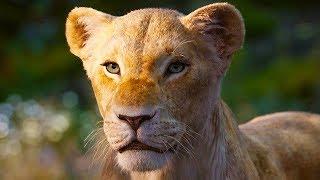 New THE LION KING Nala Trailer