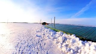 И снова задуло снегом теплицу(http://arbuzyoptom.ucoz.ru https://vk.com/arbuzyoptom https://www.facebook.com/arbuzyoptom., 2016-02-28T11:06:41.000Z)