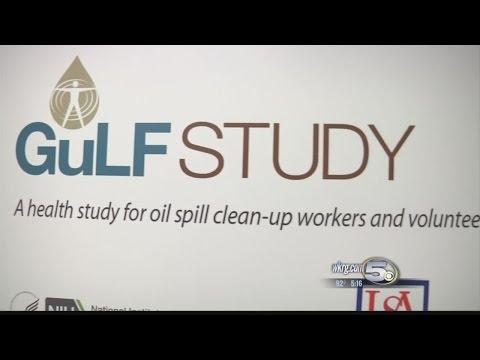 Studying The Gulf Study