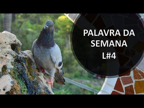 Aula de Latim 07 - Esse et Posse, verbos ser e poder from YouTube · Duration:  24 minutes 25 seconds