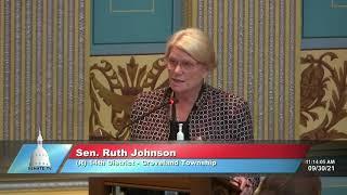 Sen. Johnson addresses the Senate on HB 4838