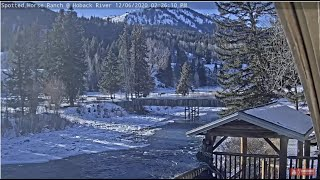 Preview of stream Spotted Horse Guest Ranch on Hoback River, USA