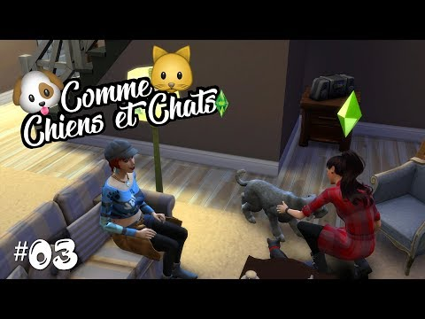 🐱🐶 Comme Chiens et Chats #03 | Catarina !