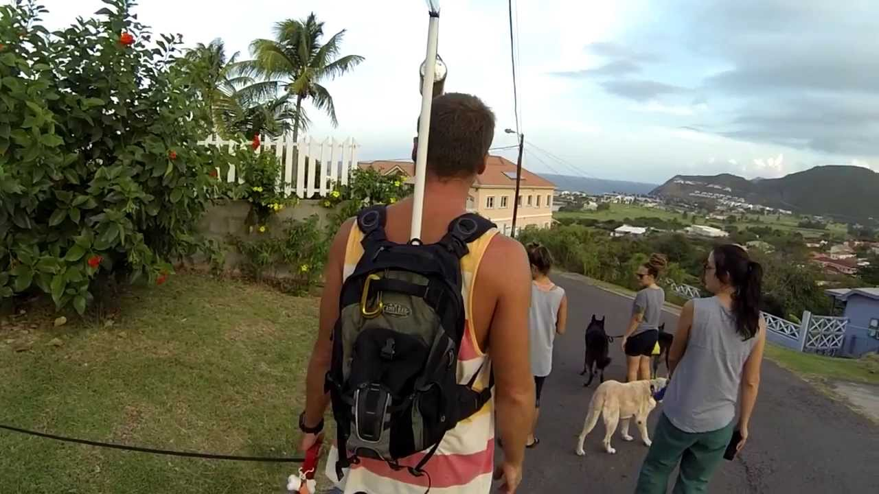 Dog walking with GoPro backpack swivel mount (DIY) - YouTube