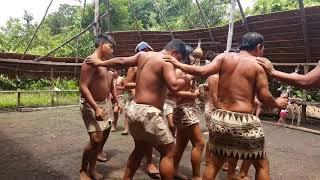 Video Tribú Los Boras download MP3, 3GP, MP4, WEBM, AVI, FLV Agustus 2018