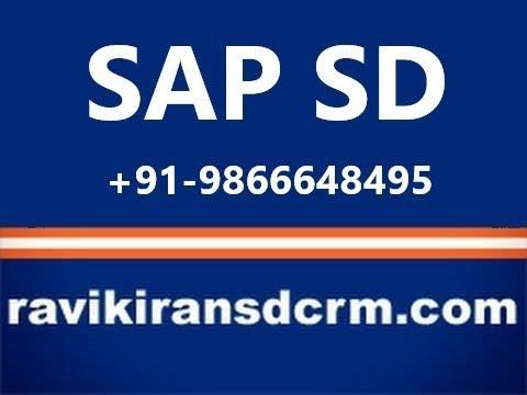 Sap Sd Training Videos Free Download