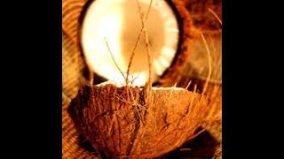 नारियल से जुड़ी खास बातें जो हमारे शास्त्रों में वर्णित हैं