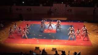 Kukkiwon Taekwondo full demonstration in Jordan 17 May 2013 عرض فريق الكوكيوون للتايكواندو في الأردن