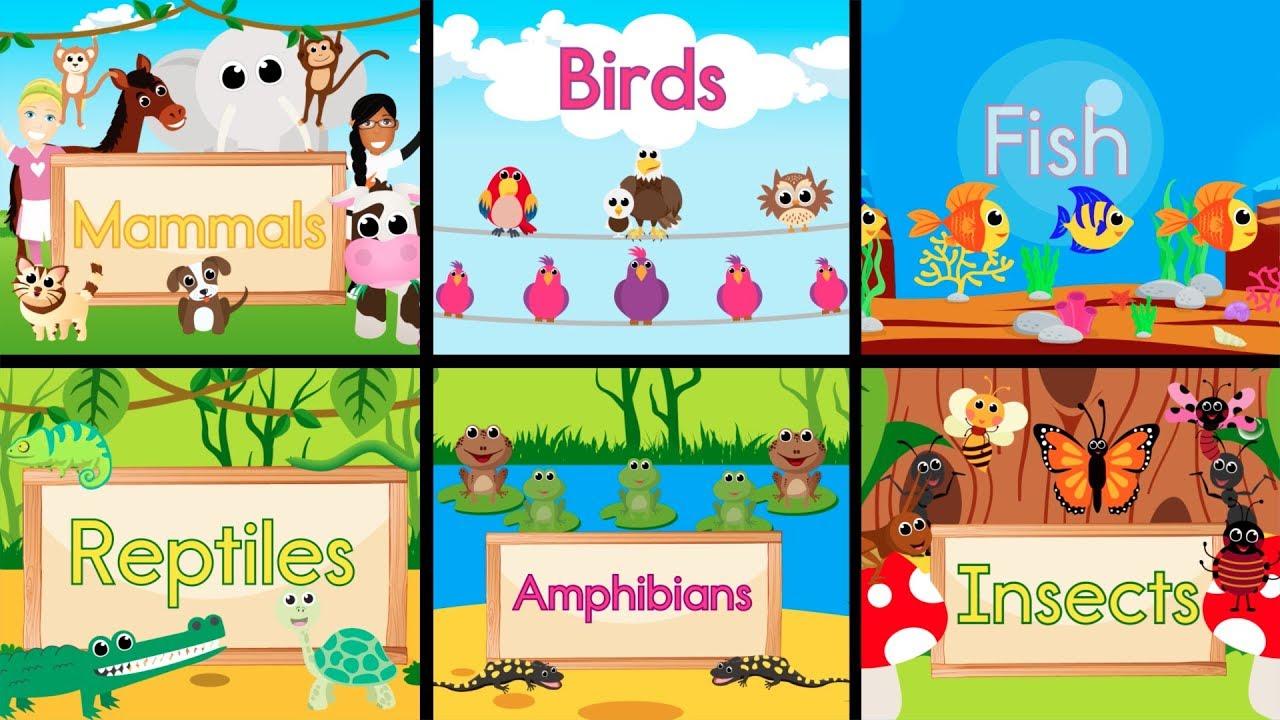 animal song animated fun teaching type