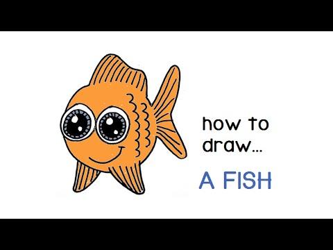Cartoon Fish Drawing How To Draw A Cartoon Fish – Youtube
