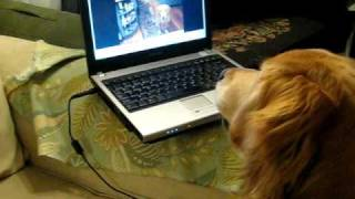 More George watching the laptop thumbnail