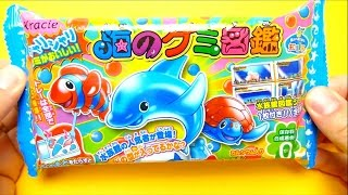 Japanese DIY Happy Kitchen Dolphin Gummy Kracie Popin Cookin