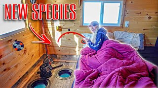 Ice Camping In A $50,000 I¢e House!!! (Fishing In Bed)