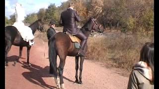 Свадьба на лошадях.avi
