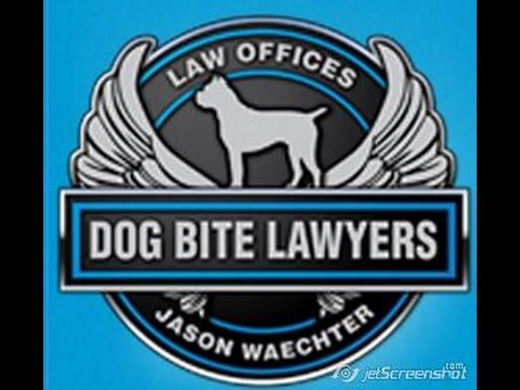 Statute of Limitations Dog Bite Lawsuit Pennsylvania