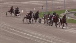 Vidéo de la course PMU PRIX D'AMSTERDAM (MERWESTAAL TALENT CHALLENGE)