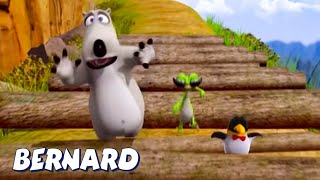Download Bernard Bear | Bernard Falls Over! AND MORE | Cartoons for Children
