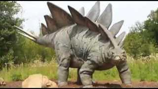 Dinosaur didn