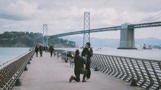 Wilson & Tiffany: The Proposal