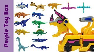 공룡메카드 장난감 총모음 Dinosaur Eggs, Transformer And Car Toys