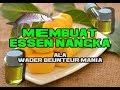 Cara Membuat Essen Nangka , Ala Wader Beunteur Mania