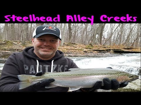 Erie Steelhead Fishing