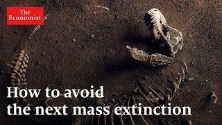 Mass extinction: what can stop it?   The Economist